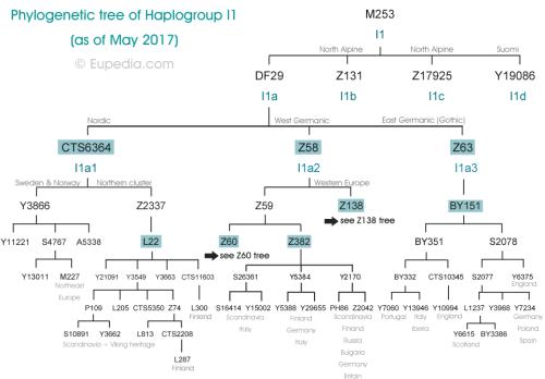 I1-tree-top (1)